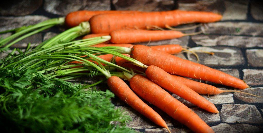 Möhren, Karotten, MS Ernährung, gesunde Ernährung, Ernährung bei MS