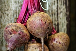 Rote Bete, Gemüse, vegan, MS Ernährung, gesunde Ernährung, Vitaltoffe, Vitamine